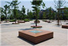 景区靠树排椅 广场木质座椅|振兴