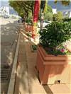花箱模板免费下载 景观花箱制造商